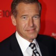 Media Fall Guy Brian Williams