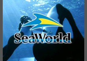 f7efc256bb244fbcd4b33348756f-is-seaworld-bad-for-orcas